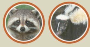 Animal control Hummelstown PA