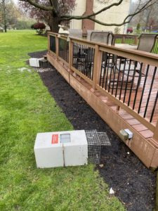 groundhog removal set up